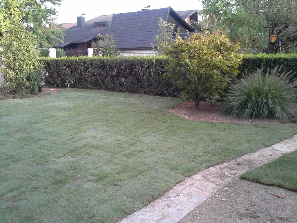 Urejanje, vzdrževanje vrtov, polaganje, setev trave, obrezovanje drevja, žive meje - Vrtnarstvo Šink gallery photo no.37