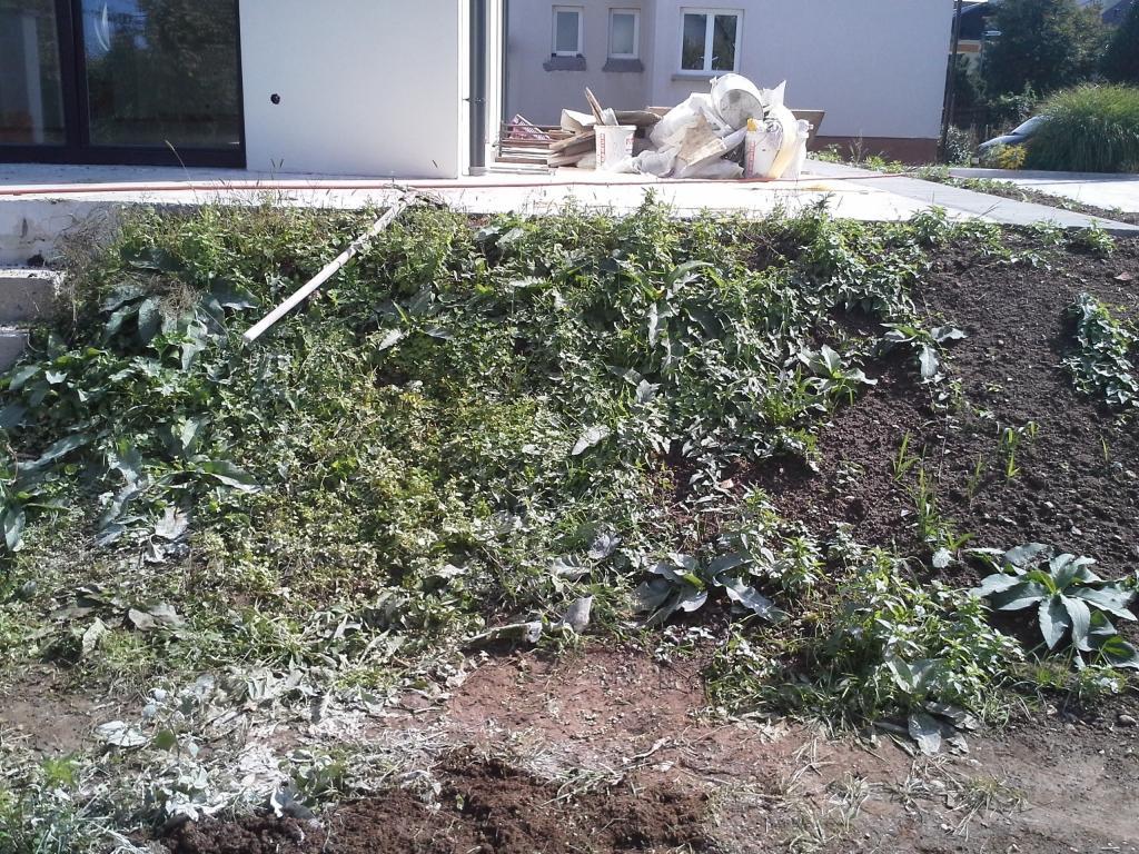 Urejanje, vzdrževanje vrtov, polaganje, setev trave, obrezovanje drevja, žive meje - Vrtnarstvo Šink gallery photo no.38