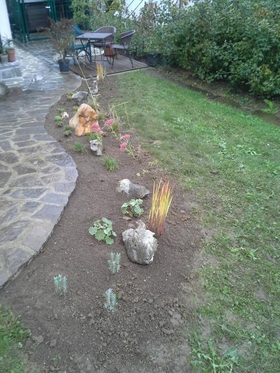 Urejanje, vzdrževanje vrtov, polaganje, setev trave, obrezovanje drevja, žive meje - Vrtnarstvo Šink gallery photo no.48