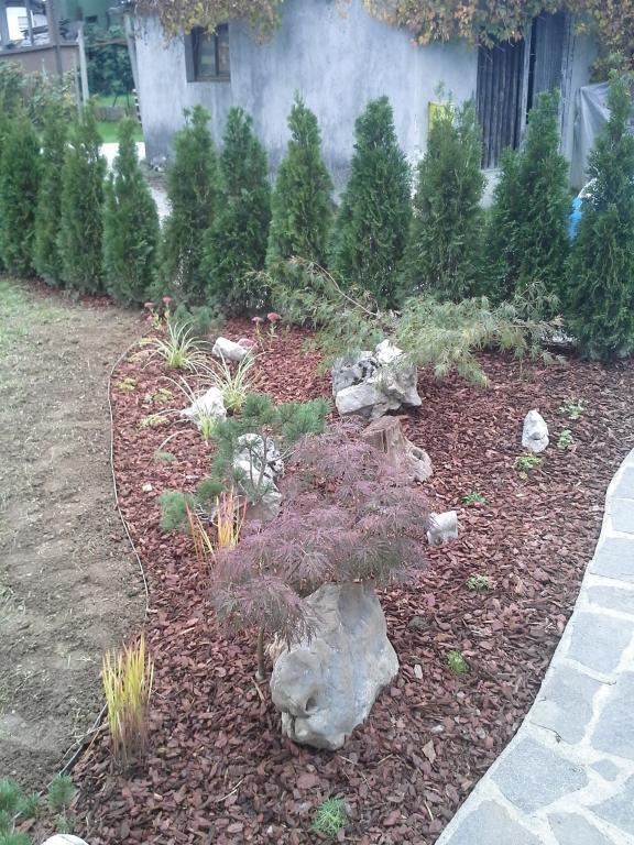 Urejanje, vzdrževanje vrtov, polaganje, setev trave, obrezovanje drevja, žive meje - Vrtnarstvo Šink gallery photo no.49