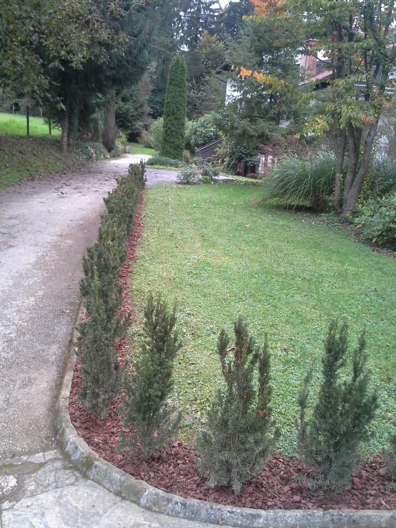 Urejanje, vzdrževanje vrtov, polaganje, setev trave, obrezovanje drevja, žive meje - Vrtnarstvo Šink gallery photo no.53