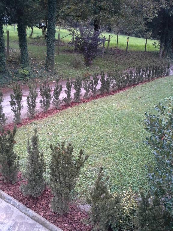Urejanje, vzdrževanje vrtov, polaganje, setev trave, obrezovanje drevja, žive meje - Vrtnarstvo Šink gallery photo no.54