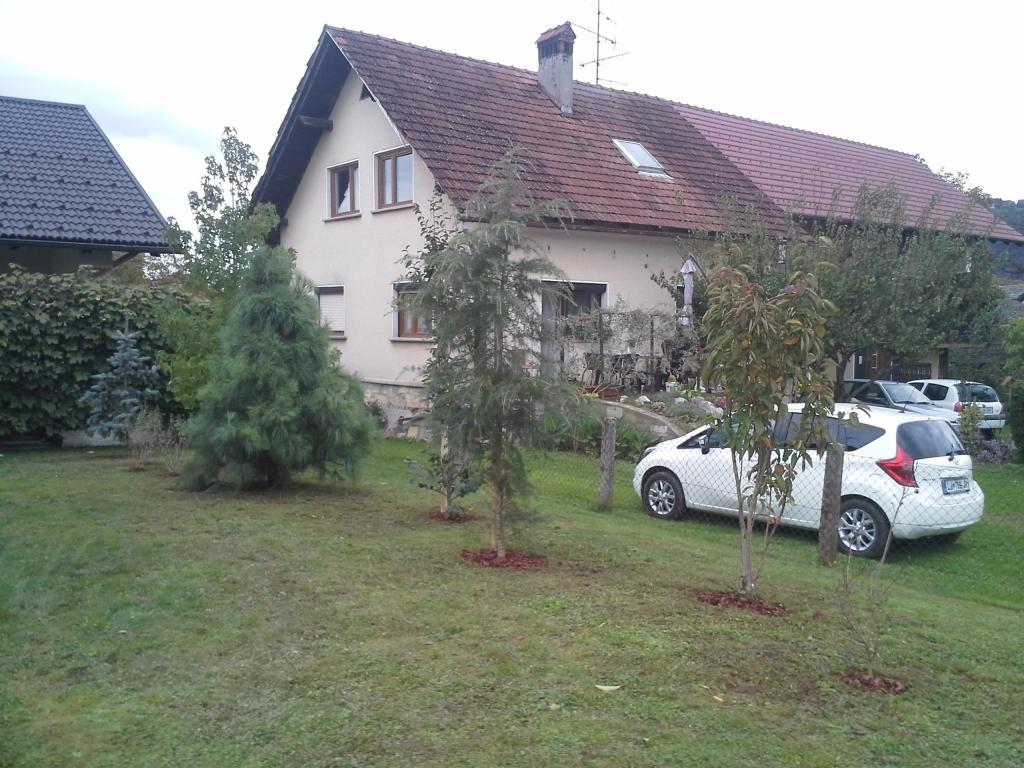 Urejanje, vzdrževanje vrtov, polaganje, setev trave, obrezovanje drevja, žive meje - Vrtnarstvo Šink gallery photo no.55