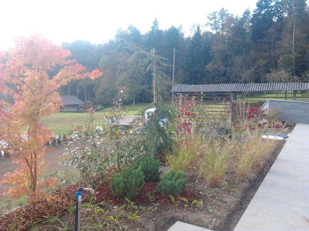 Urejanje, vzdrževanje vrtov, polaganje, setev trave, obrezovanje drevja, žive meje - Vrtnarstvo Šink gallery photo no.58