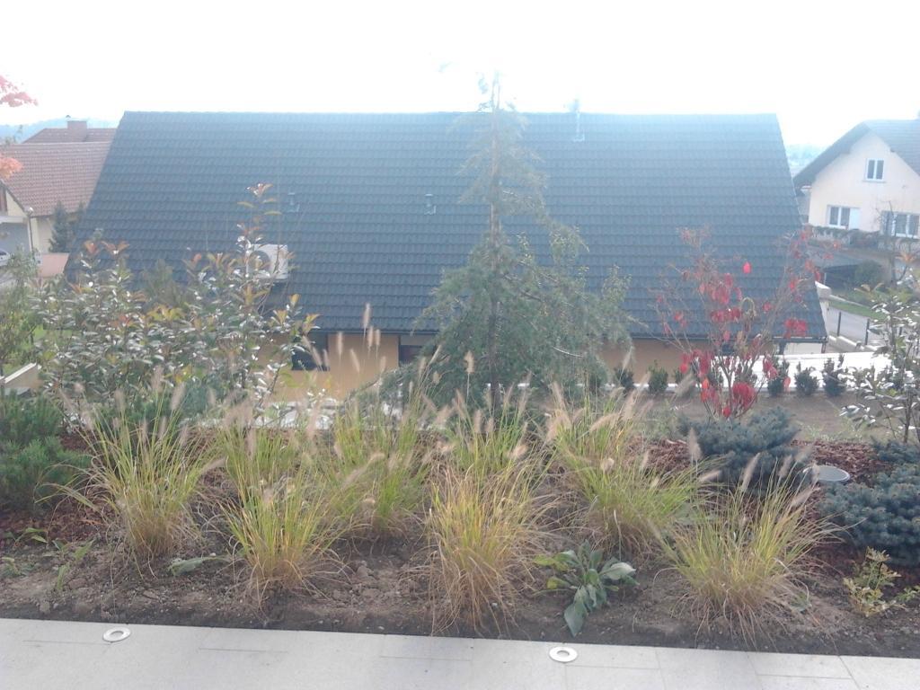 Urejanje, vzdrževanje vrtov, polaganje, setev trave, obrezovanje drevja, žive meje - Vrtnarstvo Šink gallery photo no.59