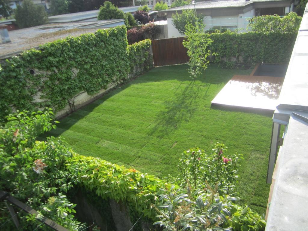 Urejanje, vzdrževanje vrtov, polaganje, setev trave, obrezovanje drevja, žive meje - Vrtnarstvo Šink gallery photo no.74