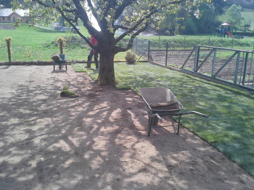 Urejanje, vzdrževanje vrtov, polaganje, setev trave, obrezovanje drevja, žive meje - Vrtnarstvo Šink gallery photo no.83