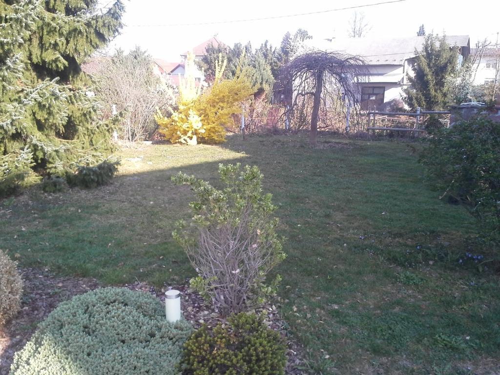 Urejanje, vzdrževanje vrtov, polaganje, setev trave, obrezovanje drevja, žive meje - Vrtnarstvo Šink gallery photo no.86