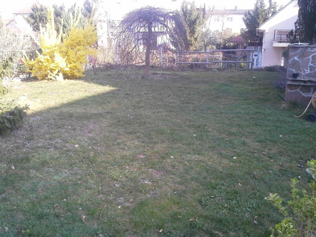 Urejanje, vzdrževanje vrtov, polaganje, setev trave, obrezovanje drevja, žive meje - Vrtnarstvo Šink gallery photo no.87