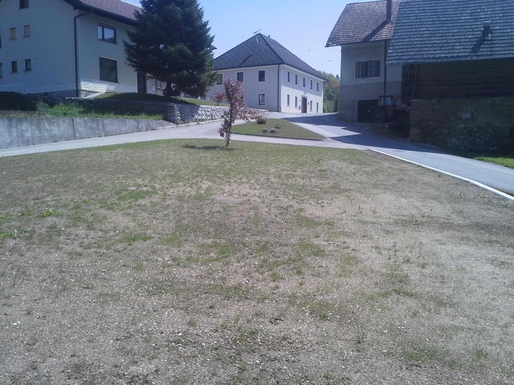 Urejanje, vzdrževanje vrtov, polaganje, setev trave, obrezovanje drevja, žive meje - Vrtnarstvo Šink gallery photo no.97