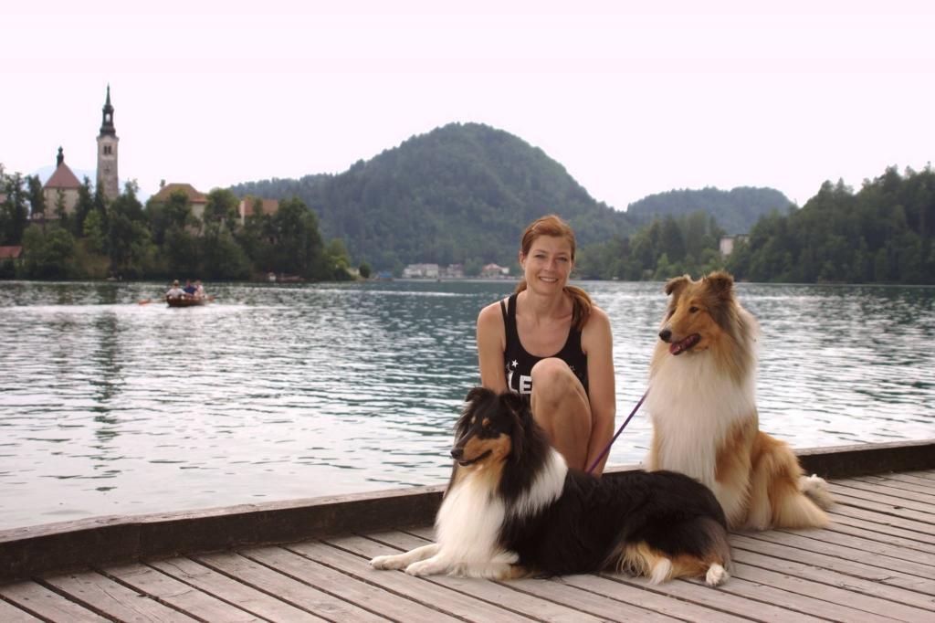V.I.Pes, varstvo in nega psov, Šenčur gallery photo no.5