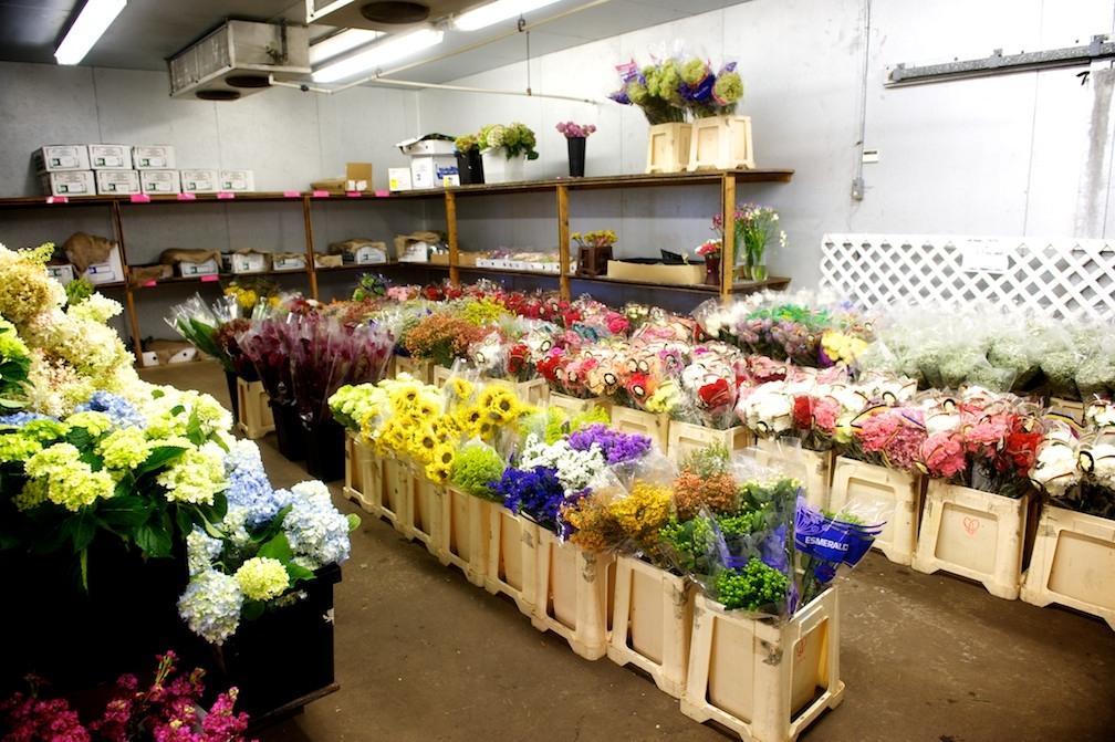 Veleprodaja cvetja gallery photo no.1