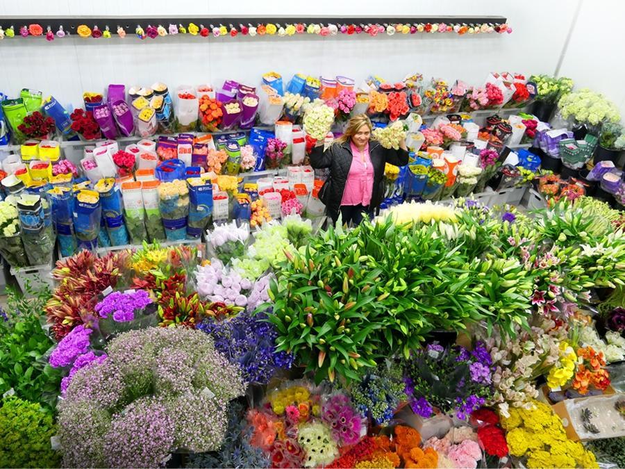 Veleprodaja cvetja gallery photo no.3