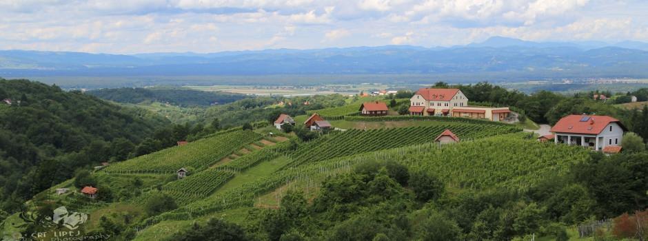 Vinogradniško turistično društvo Gadova Peč gallery photo no.1