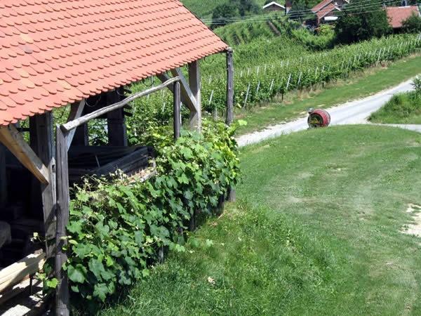 Turistična kmetija Dervarič, Pomurje gallery photo no.18