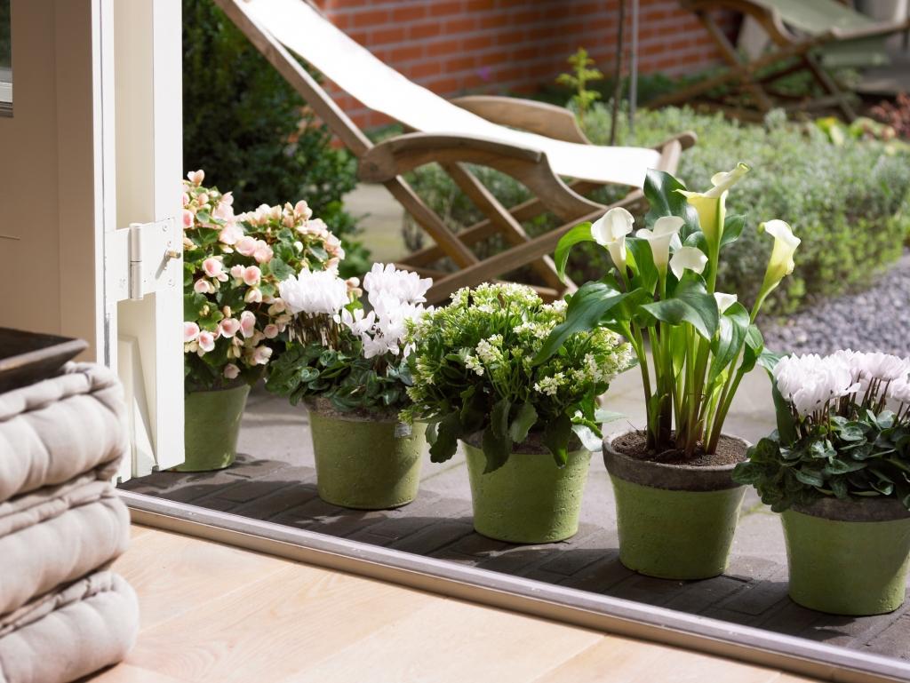 Cvetlični, Darilni Boutique Tila, Šmartno pri Litiji gallery photo no.3