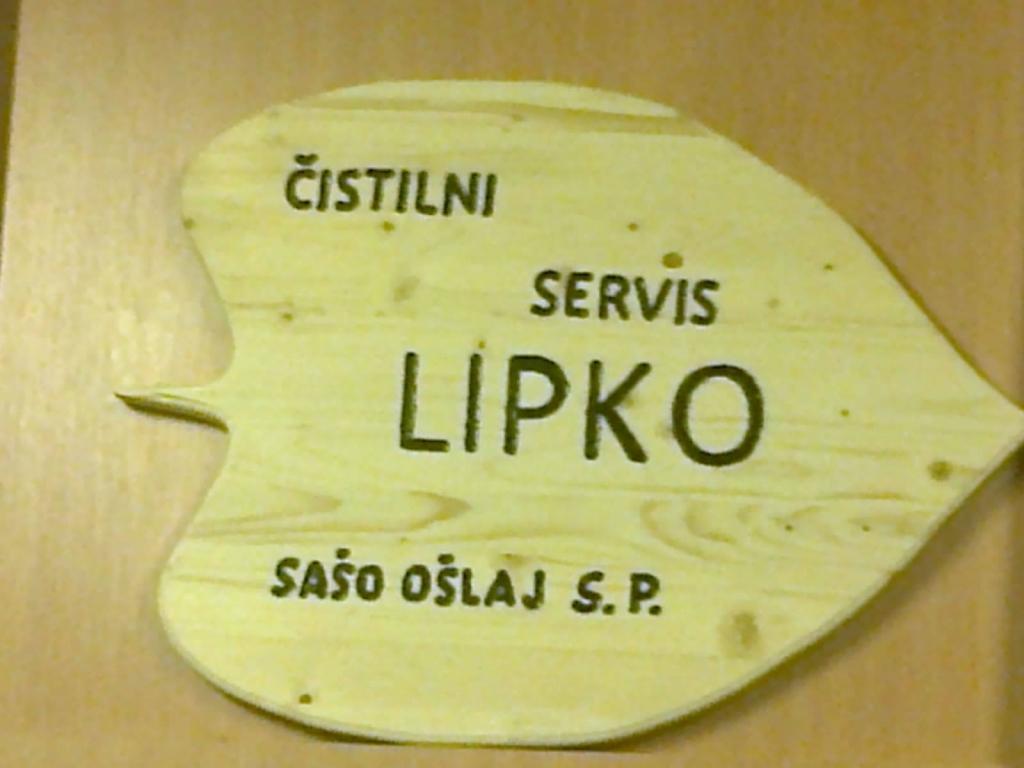 Čistilni servis Lipko, Pomurje gallery photo no.0