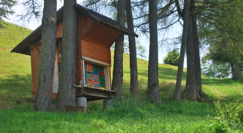 Prenočišča, turistična kmetija, rooms, Pr´ Dovar, Krvavec gallery photo no.9