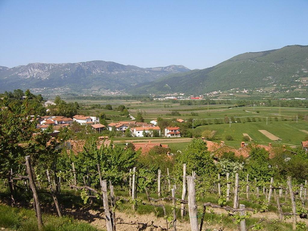 Turistična kmetija Pilih, Vipava gallery photo no.1