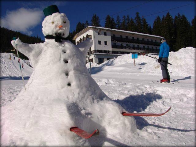 Ski center Pokljuka gallery photo no.11