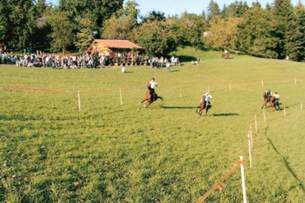 Izletniška kmetija Petre, Vitanje, Celje gallery photo no.1