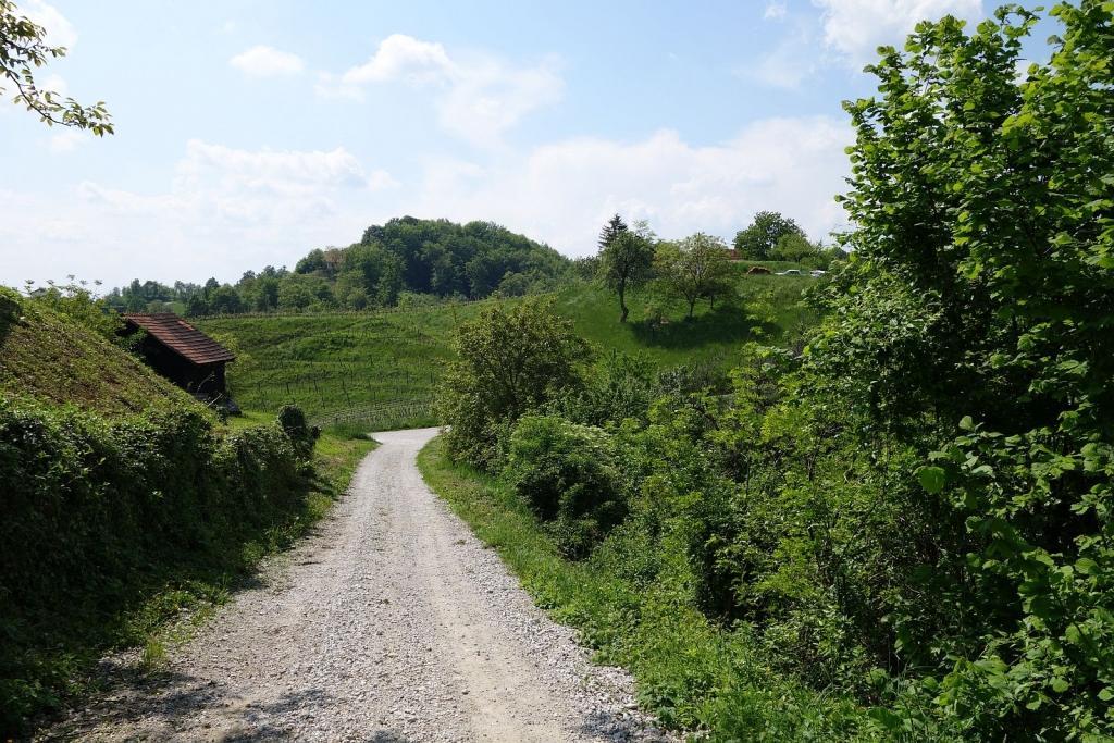 Gostišče, penzion OB RIBNIKU, Ptuj gallery photo no.3
