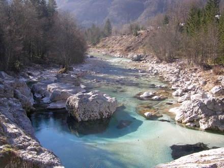 Turistična kmetija Jelinčič, Kamp, Sirarna, Soča, Bovec gallery photo no.3