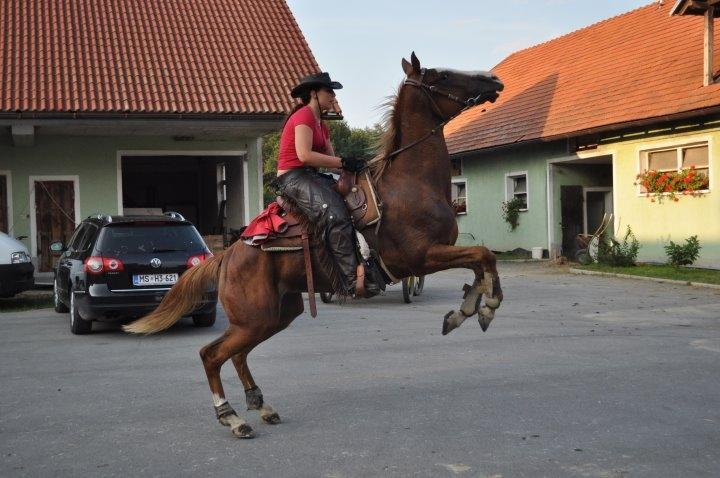Ekološko turistična kmetija Vrbnjak, Mala Nedelja gallery photo no.6