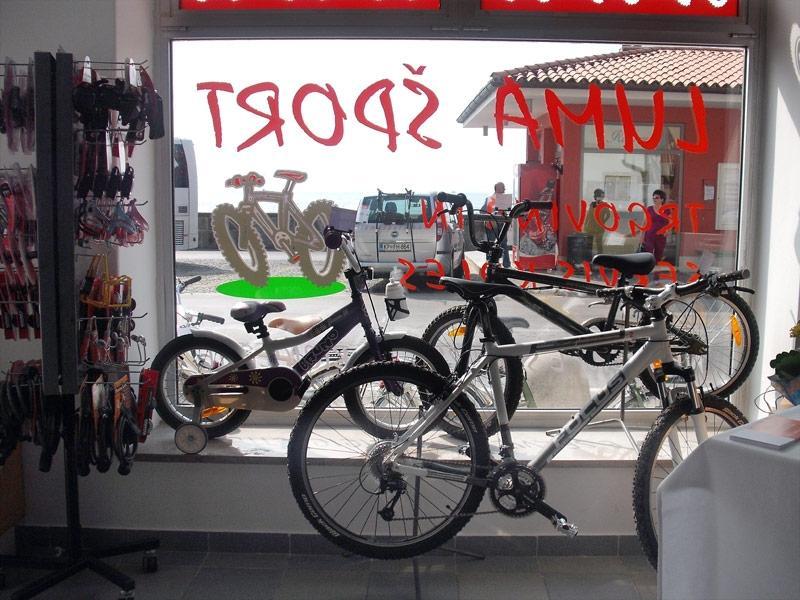 Luma Šport rent a bike (kolesarski izleti, prodaja, servis in izposoja koles), Piran gallery photo no.2