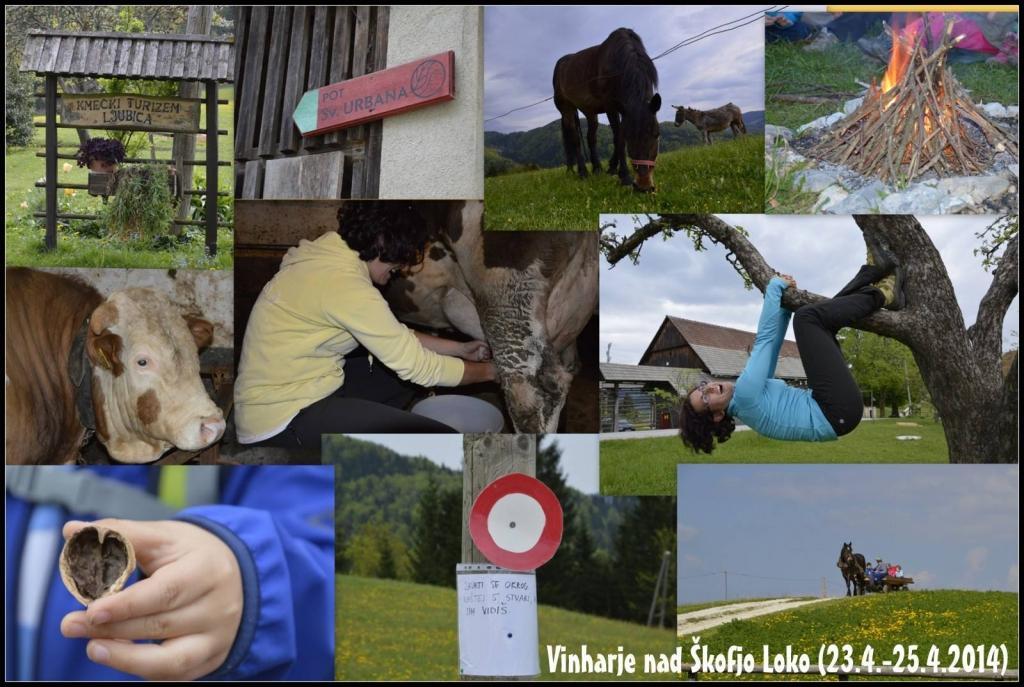 Turistična kmetija, Tourist farm, Škofja Loka gallery photo no.9