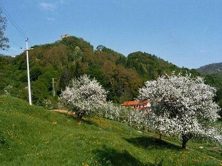Turistična kmetija Ivankotovi, Prem gallery photo no.5