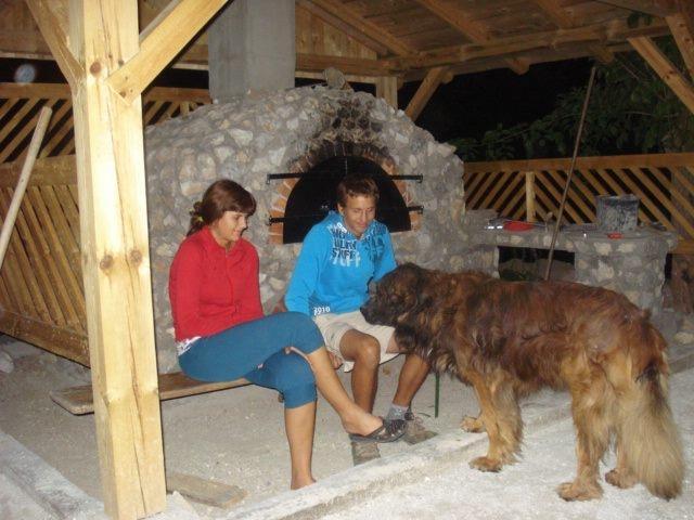 Kmetija Prošt, Litija gallery photo no.14