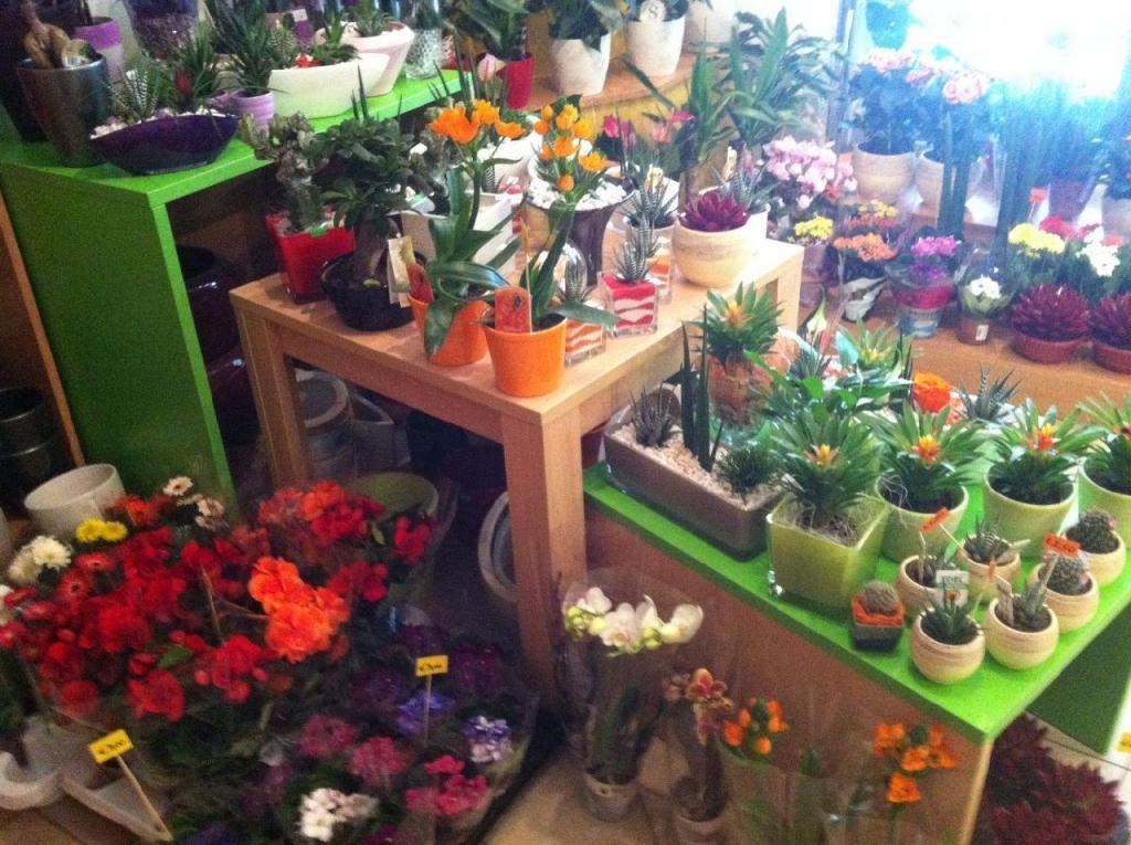 Cvetlični, Darilni Boutique Tila, Šmartno pri Litiji gallery photo no.1