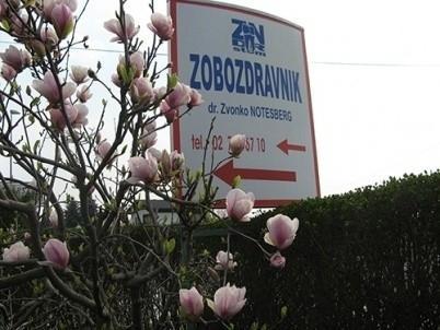 Zobozdravnik Ptuj Notesdent, PTUJ gallery photo no.1