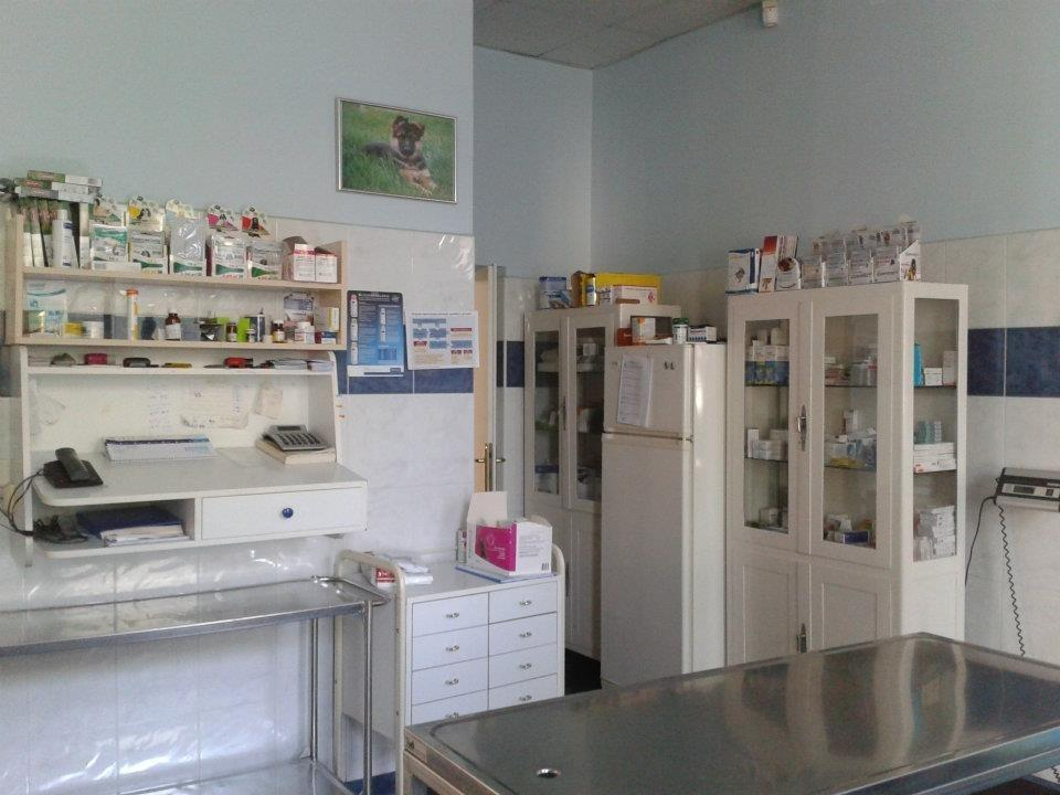 Veterinarska bolnica Vipava gallery photo no.9