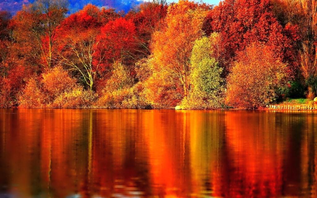 Vesela jesen - product image