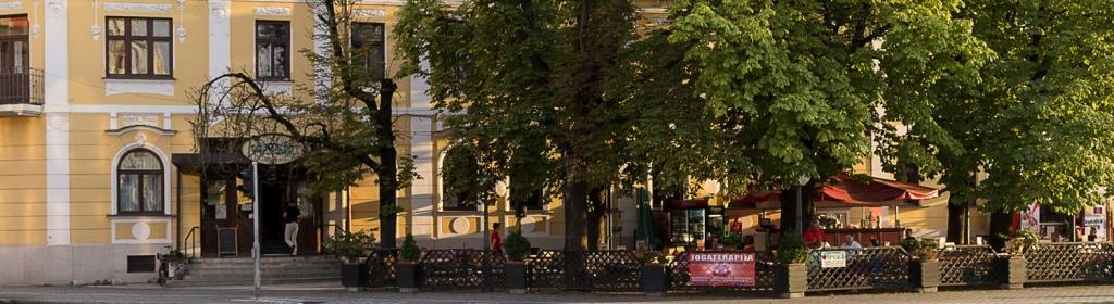 Hotel Zvezda*** - product image