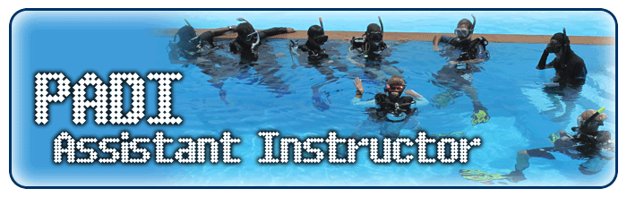 Asistent inštruktor - product image