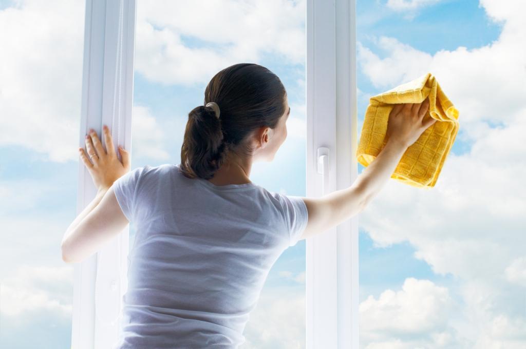 Čiščenje stanovanj - product image