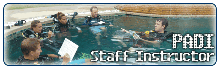 IDC Staff - product image