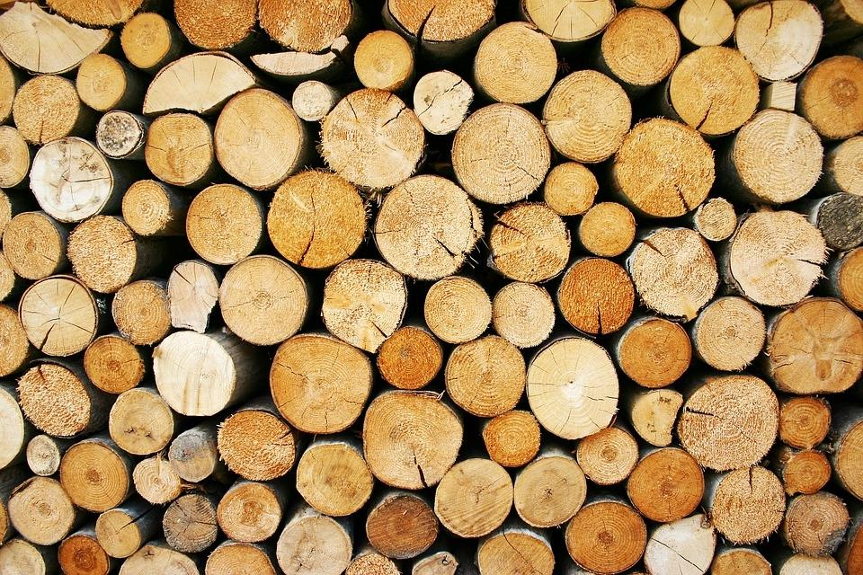 Odkup in prodaja lesa - product image