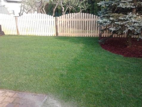 Vzdrževanje vrtov in javnih površin - product image