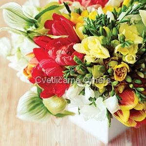 Cvetje - product image