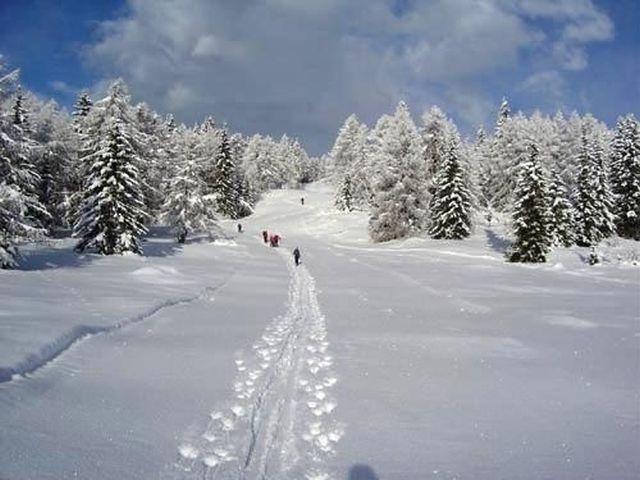 Karnijske Alpe - snowshoeing - product image