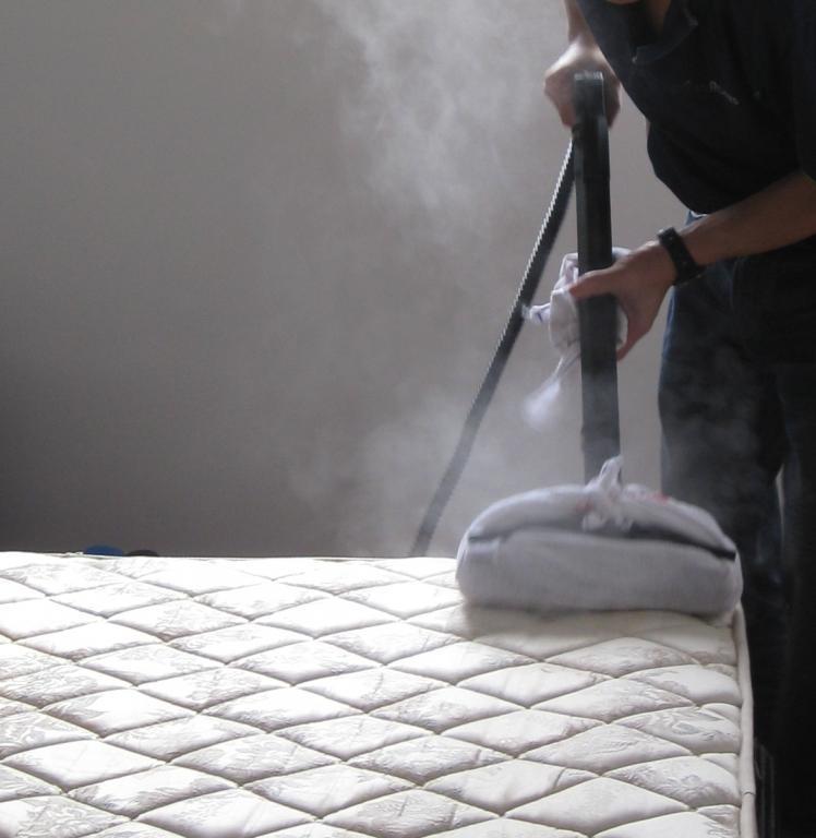 Ekološko čiščenje z vročo paro - product image