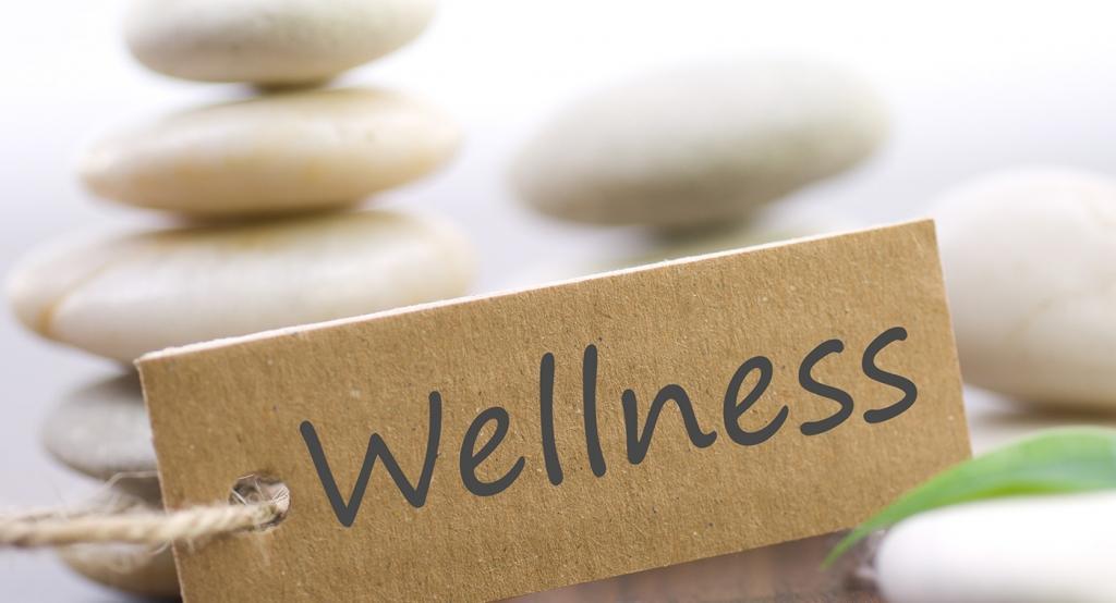 WELLNESS - product image