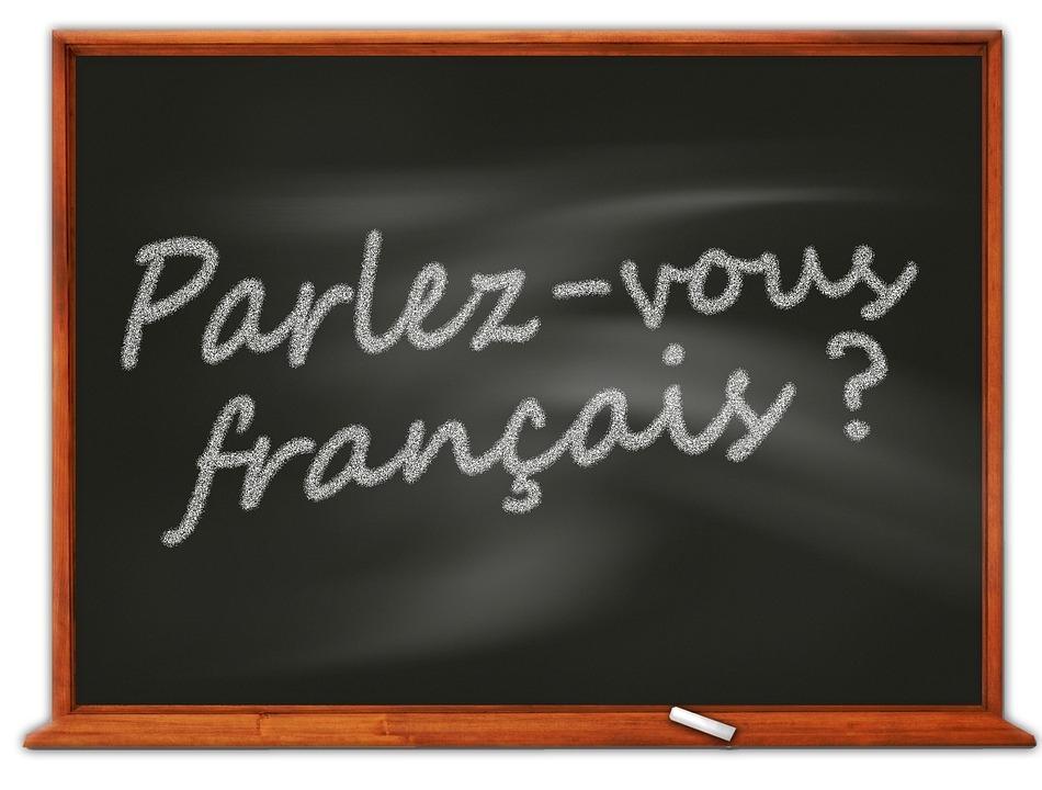NOVO prevajanje iz FRANCOŠČINE in NEMŠČINE, ter obratno - product image