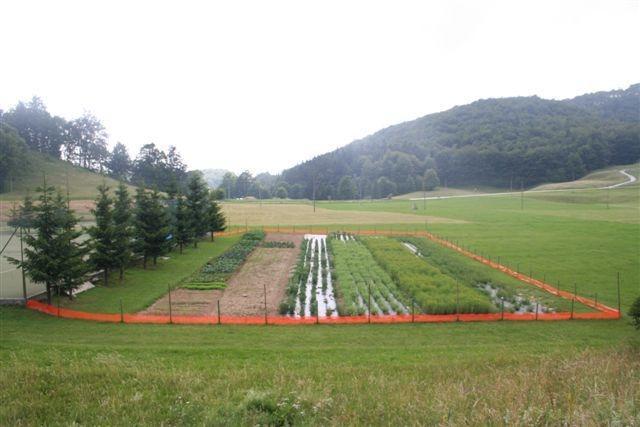 Ekološka kmetija - product image