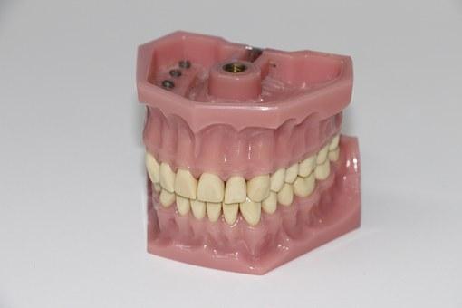 Protetika - product image