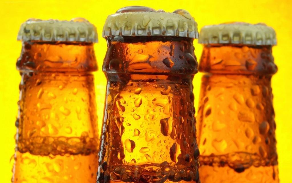 Pivo v steklenici za domov - product image